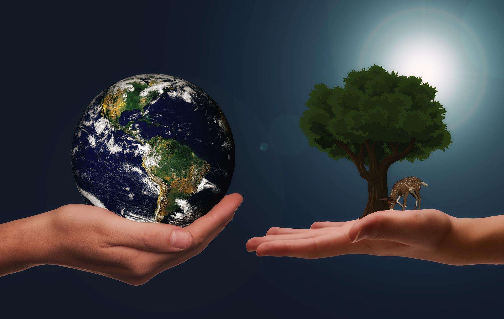 Ekologiczna firma